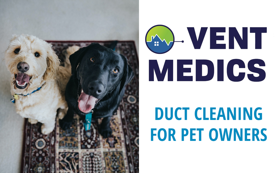 Duct Cleaning for Pet Owners